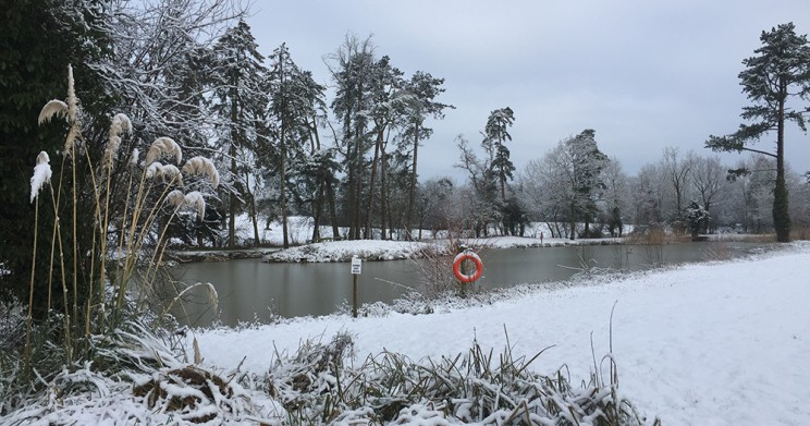 The Lake in Winter